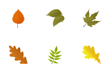 Autumn Leaves Icon Pack