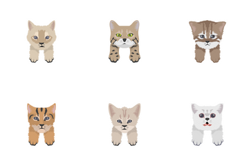 Cat Face Drawing Icon Pack