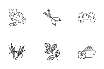 Herbal And Spices Icon Pack