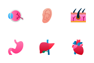 Human Organ Icon Pack