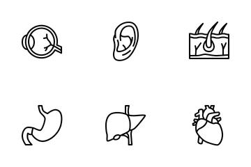 Human Organ Icon Pack