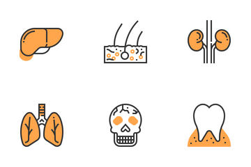 Human Organs Icon Pack