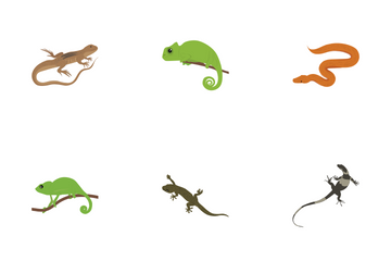 Pet Reptiles And Amphibians Icon Pack