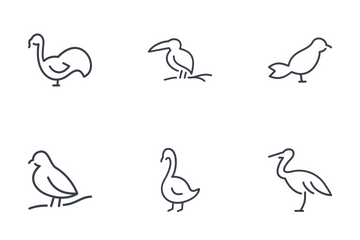 Set Of Birds Thinline Icons Icon Pack
