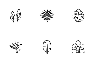 Tropical Plants Icon Pack