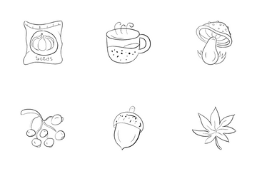 Winter Summer Autumn And Spring Icon Pack