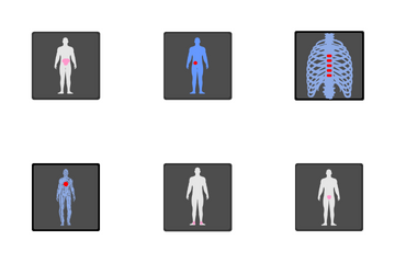 X-ray  Icon Pack