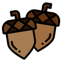 Acorn Autumn Chestnut Icon