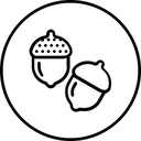 Acorn Icon