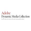 Adobe Dynamic Media Icon
