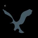 American Eagle Brand Logo Brand Icon