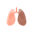 Anatomy Detoxification Hepatology Icon