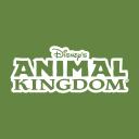 Animal Kingdom Logo Icon