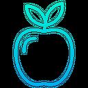 Fruit Healthy Food Organic Icon