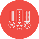 Appraisal Award Medal Icon