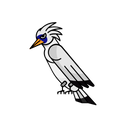 Bali Starlings Bird Animal Icon