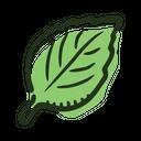 Leaf Basil Plant Icon