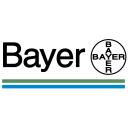 Bayer Icon