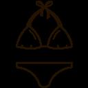 Bikini Swimsuit Two Icon