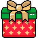 Birthday Gift Present Icon