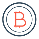 Bitcoin Currency Cryptocurrency Icon