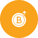 Bitcoin hike price Icon