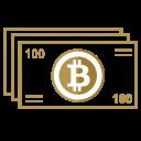 Bitcoin Pay Money Icon