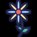 Bloom Daisy Daisy Flower Icon