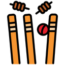 Bowled Out Icon