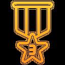 Bronze Star Medal Icon