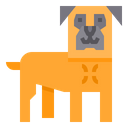 Bull Mastiff Dog Icon
