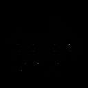 Bumper Boat Icon