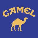 Camel Company Brand Icon