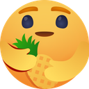 Care for pineapple Icon