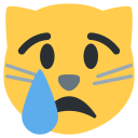 Cat Cry Face Icon