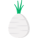 Celery Root Vegetable Food Icon