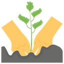 Celery Seedling Seed Germination Planting Icon
