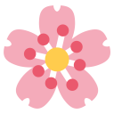 Cherry Blossom Flower Icon