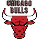 Chicago Bulls Nba Basketball Icon