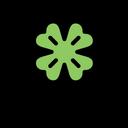 Clover Lucky Shamrock Icon