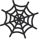 Cobweb Spider Net Icon