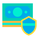 Coin Shield Icon