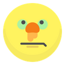Cold Sick Face Icon