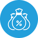 Company Budget Bag Icon