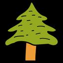 Tree Nature Conifer Tree Icon