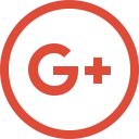 Connection Google Plus Icon