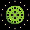 Coronavirus Corona Virus Corona Icon