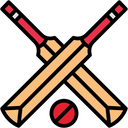 Cricket Logo Icon