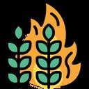 Crops Fire Crops Fire Icon