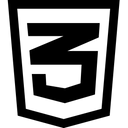 Css Logo Icon